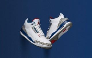 Air Jordan 3 True Blue OG 1