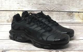 Nike Air Max Plus leather triple black AJ2029 001 1